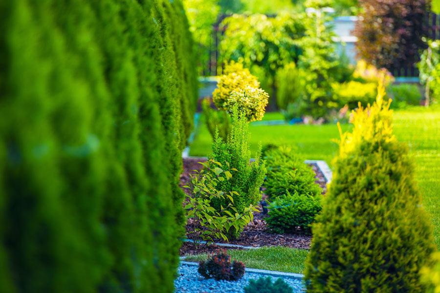 Garten - Projekt von Garten- & Landschaftsbau Kopp